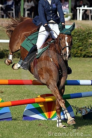 Toon het Springen Paard en Ruiter