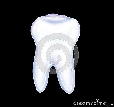 Free Tooth Stock Photo - 5669570