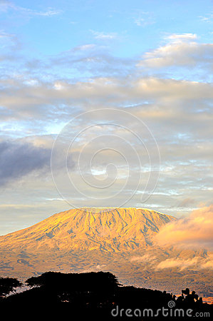 Top of kilimanjaro mountain in the sunrise