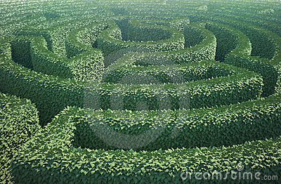Top view of a garden maze