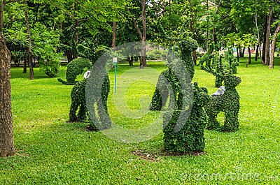 Topiary, rabbits  trimmed out of shrubs Editorial Photography