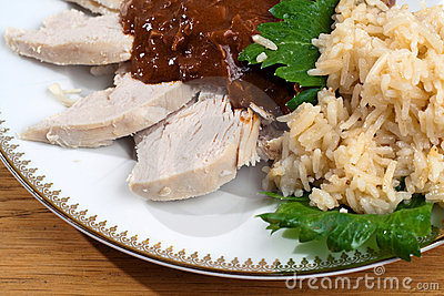 Topo con el pollo y el arroz
