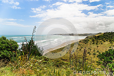 Topview on the Ngarunui beach near Raglan, Waikato