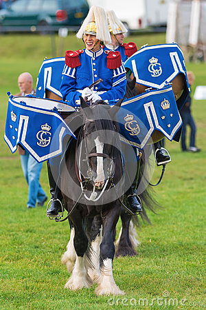 Free Tor And Oden The Drum Horses (Shire Horses) Stock Photo - 34025840