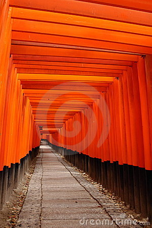 Tora of Fushimi Inari Taisha Shrine