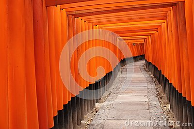Tora of Fushimi Inari Taisha Shrine