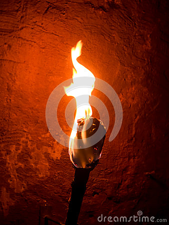 Free Torch Royalty Free Stock Images - 56203889