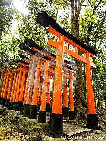 Tori gates at Fushimi Inari shrine Editorial Photo