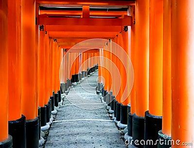Torii gates at Fushimi-Inari shrine 2