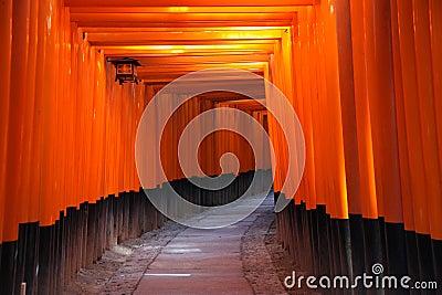 стробирует torii японии kyoto