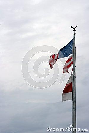 Torn Flag