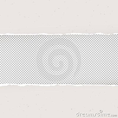 Torn Paper On Transparent Background. Design Template ...