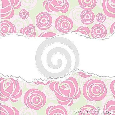 Torn rose background.