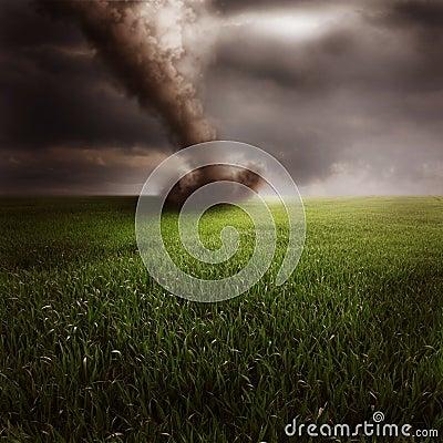 Tornado in green field