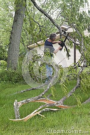 Free Tornado Wind Storm Damage, Man Chainsaw Downed Tree Stock Photo - 42247730