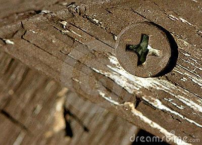 Tornillo en la madera