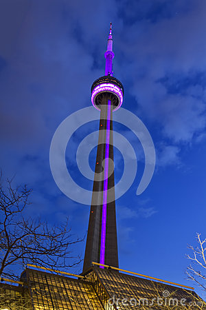 CN Tower by night Editorial Stock Image