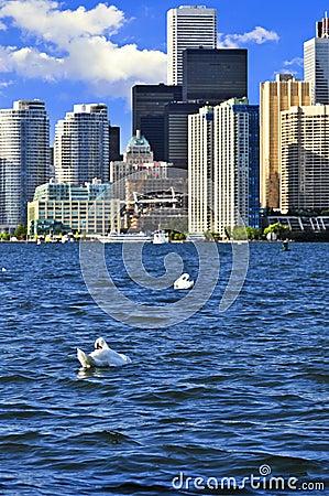 Free Toronto Waterfront Royalty Free Stock Photos - 6877168