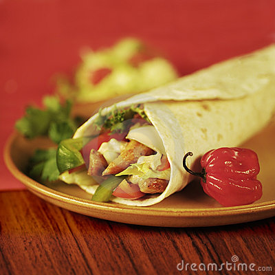 Tortilla Filled with Vegetables and Meat