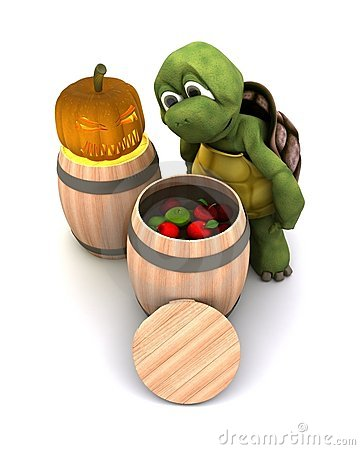 Tortoise bobbing for apples