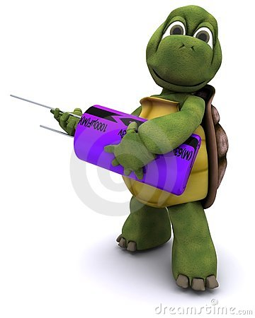 Tortoise with a capacitor