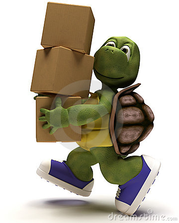 Tortoise Caricature running with packing cartons
