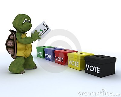 Tortoise casting a vote in election