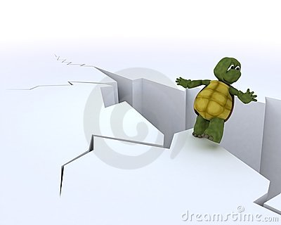 Tortoise on a cliff edge