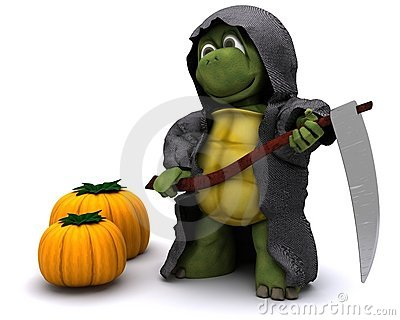 Tortoise Dressed As The Grim Reaper For Halloween Royalty Free Stock Photos - Image: 21175998