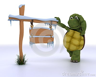 Tortoise with a frozen blank road sign