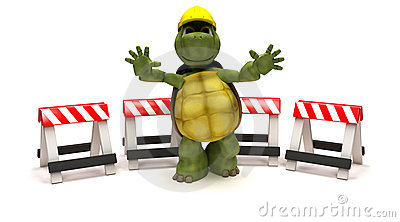 Tortoise with a hazard barriers