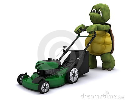 Tortoise with a lawn mower
