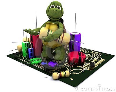 Tortoise with a micro chip