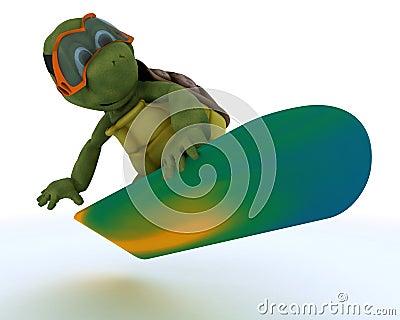 Tortoise riding a snowboard