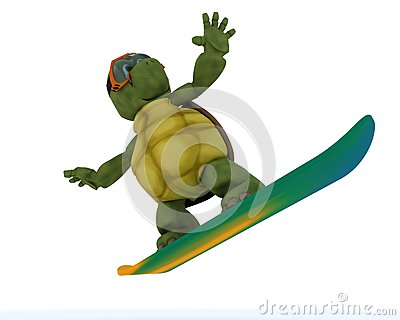 Tortoise riding a snowboard