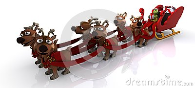 Tortoise in santas sleigh