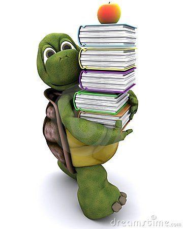Tortoise with school book and apple