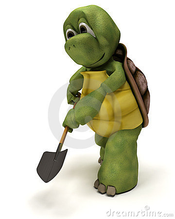 Tortoise with a spade