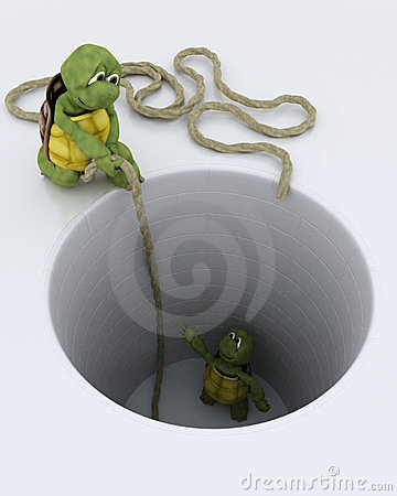 Tortoise stuck in a hole metaphor