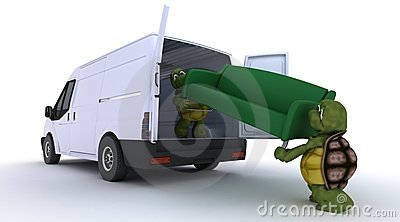 Tortoises loading a sofa into a van
