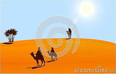 Touareg in sahara desert
