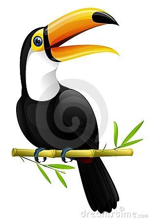 Free Toucan Royalty Free Stock Photos - 5296728