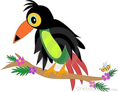 Toucan Bird with Bee