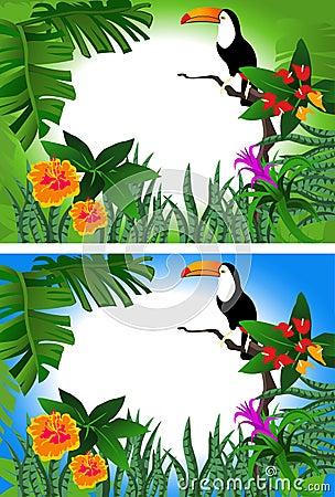 Toucan Frame