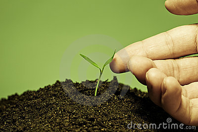 Touch to plant