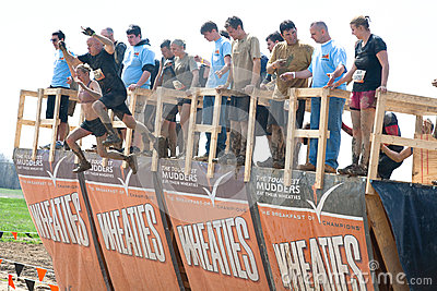 Tough Mudder: Racers Jumping off Walk the Plank Editorial Stock Image