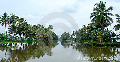 Tourism in India, lush vegetation in Kerala
