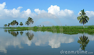 Tourism in India, lush vegetation in Kerala