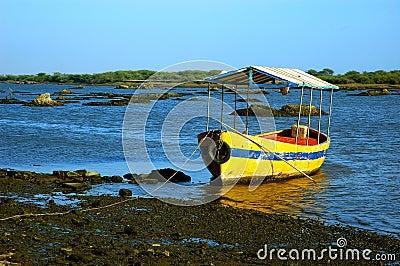 Tourist boat on shore