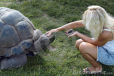 Tourist and giant turtle.